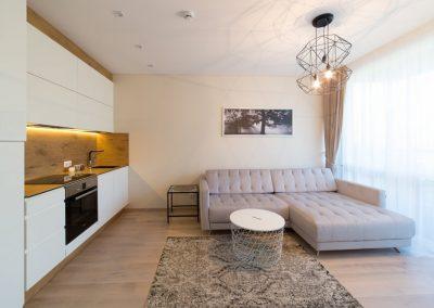 Apartamentai Vanagupėje